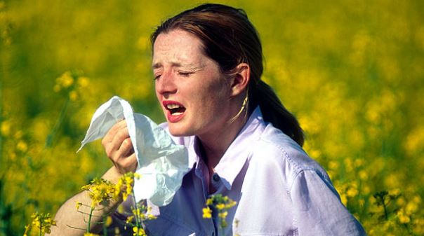 scabs-in-nose-from-hay-fever-and-allergies